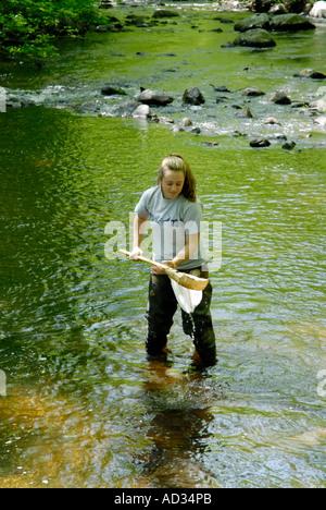 Adolescente en utilisant l'eau de la rivière d'échantillonnage net pour les poissons et invertébrés d'indicateurs Banque D'Images