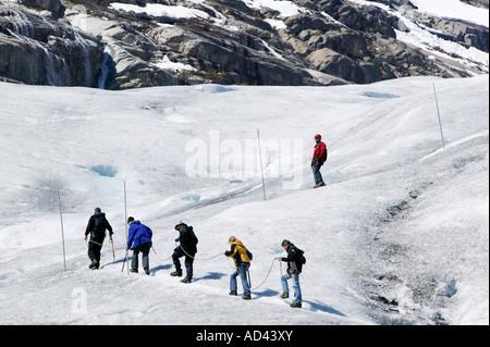 Randonnée guidée sur le glacier Nigardsbreen dans le Parc National de Jostedalsbreen Lustre Sogn og Fjordane Norvège