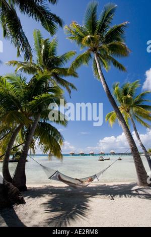 Fille dans un hamac à l'ombre des palmiers sur l'île tropicale de Manihi dans les Tuamotu îles de Polynésie Française Banque D'Images