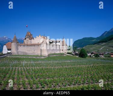 Chateau et vignes Aigle Vaud canton suisse Banque D'Images