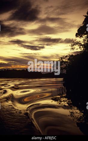 Classic golden sunset sky de voile sur la rivière et la silhouette du paysage de forêt tropicale dans la région Banque D'Images