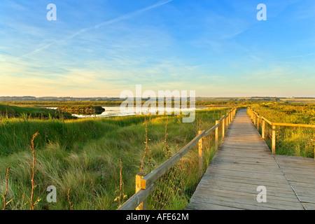 Promenade aménagée le long de Titchwell RSPB Marais Réserver, Norfolk, UK Banque D'Images