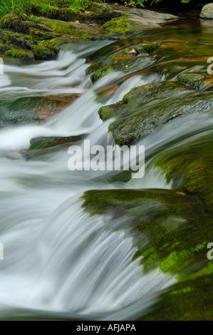 Cascades de la rivière East Lyn à Watersmeet dans Exmoor National Park, Devon, Angleterre. Banque D'Images