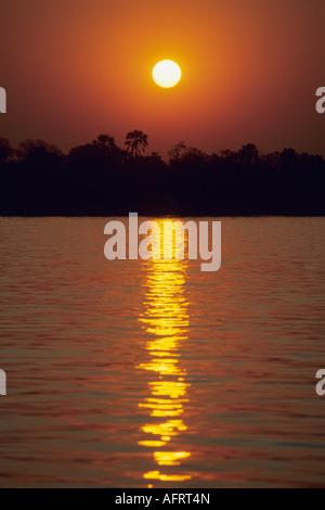 L'Afrique, Coucher de soleil sur le fleuve Zambèze , Mana Pools, Zimbabwe Banque D'Images