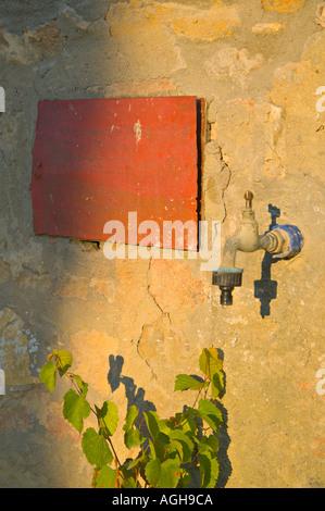 Appuyez sur un mur de la Toscane avec le rectangle rouge et plante, éclairé par la lumière du soir, Casa Alle Vacche, Toscane, Italie