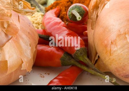 Une sélection d'épices sur un fond blanc. Banque D'Images