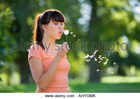 Young woman standing in field blowing dandelion seeds en vue du côté de l'air Banque D'Images