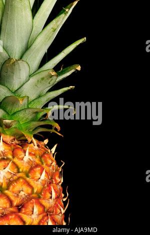 Détail d'un ananas sur un fond noir avec copie espace Banque D'Images