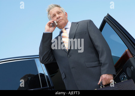 Businessman standing in porte ouverte de voiture, talking on mobile, low angle view Banque D'Images