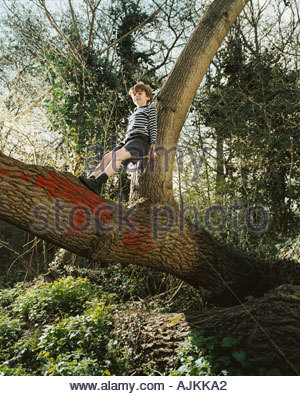 Boy standing in a tree Banque D'Images