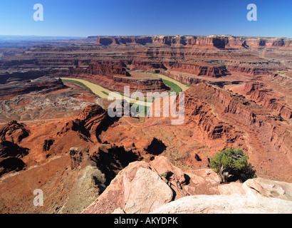 Vue depuis le Dead Horse Point State Park sur la rivière Colorado, Utah, USA Banque D'Images