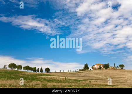 Avec des cyprès (Cupressus) Maison de campagne bordée d'arbres dans la vallée Val d'Orcia Crete Toscane Italie Banque D'Images
