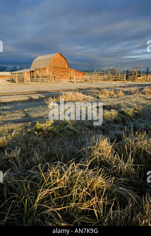 Tôt le matin d'or de la lumière sur une vieille grange Moulton sur Mormon Row dans le Grand Teton National Park Banque D'Images