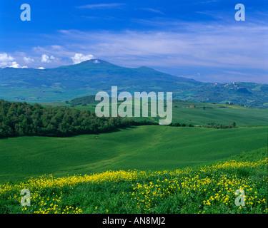 Le printemps en Toscane, Italie Banque D'Images