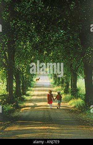 Deer crossing derrière garçon et fille sur la route de campagne en été Banque D'Images