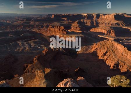 Dead Horse Point State Park en Utah en vue de donnent sur la rivière Colorado Dawn Utah USA Banque D'Images