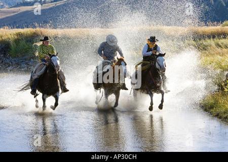 Cowgirl et cowboys équitation dans l'eau, wildwest, Oregon, USA Banque D'Images
