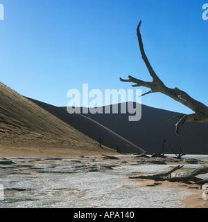 La plus grande dune de sable du monde à Sossusvlei Namibie