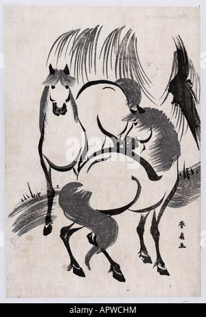 Deux chevaux sous un saule manque et Blanc en simple décorer décoration animal sauvage libre de beauté Banque D'Images