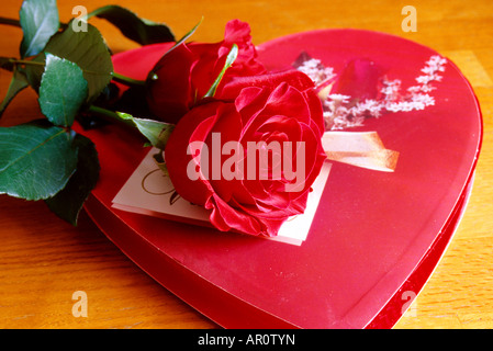 Still Life of Valentine chocolats à la rose Banque D'Images