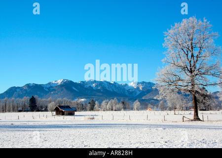 Paysage d'hiver avec Brauneck et Benediktenwand mountainrange près de Lenggries Bavaria Allemagne Europe Banque D'Images