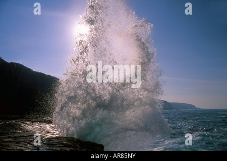 De grosses vagues se briser contre les rochers le long de côtes Ben Boyd National Park, New South Wales, Australie Banque D'Images