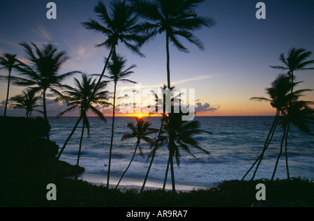 L'aube à Harrismith beach côte sud-est de la Barbade Banque D'Images