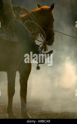 M. de fumée et de poussière remplit l'air à un ressort sur le branding Hanley Ranch dans le sud-est de l'Oregon