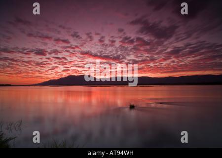 Magnifique coucher de soleil sur Mana Pools National Park, Zimbabwe Banque D'Images