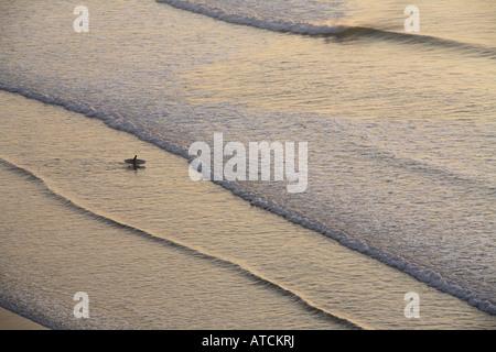 Un seul internaute promenades dans la mer dans la lumière du soir, son conseil d'administration Banque D'Images