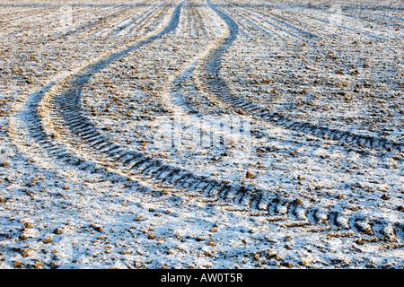 Les traces de pneus du tracteur sur un champ d'hiver glacial. Oxfordshire, Angleterre Banque D'Images