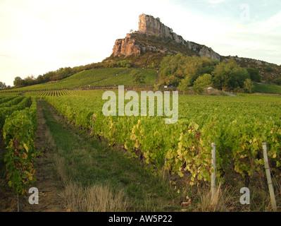 AJD46309, France, Solutré, Soane et Loire, Europe, région du Beaujolais Banque D'Images