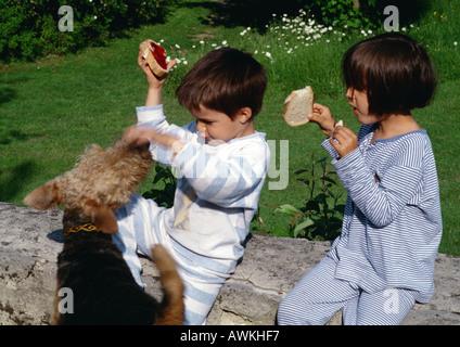 Les jeunes enfants jouer dehors avec le chien. Banque D'Images