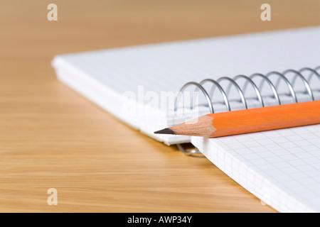 Crayon placé sur un carnet à spirales Banque D'Images