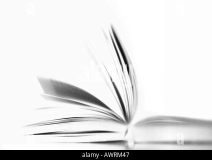 Livre ouvert, b&w. Banque D'Images