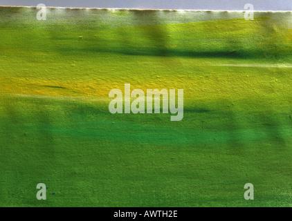 Peinture jaune et vert sur papier, full frame Banque D'Images