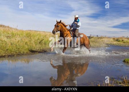 Circonscription de cow-boy dans l'eau, wildwest, Oregon, USA Banque D'Images