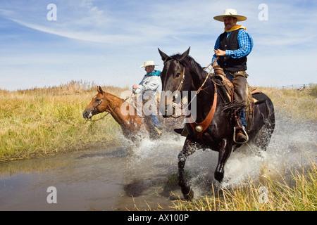 Cowboys équitation dans l'eau, de l'Oregon, USA Banque D'Images
