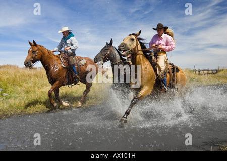 Cowgirl et cowboys à cheval dans l'eau, de l'Oregon, USA Banque D'Images