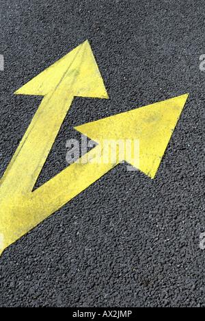 La route goudronnée avec les flèches de direction jaune Banque D'Images