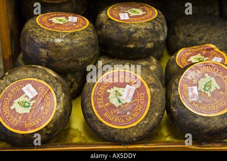 Le Pecorino Toscano, fromage de spécialité Toscane, Toscane, Italie, Europe Banque D'Images