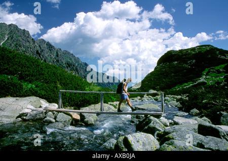 Randonneur sur le pont sur le ruisseau Roztoka, Hautes Tatras, Pologne Banque D'Images