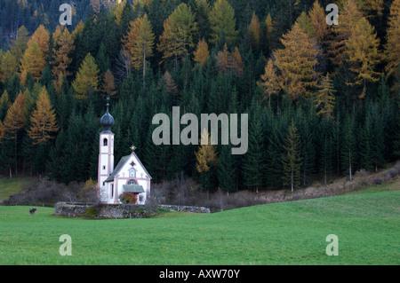 Église Saint Johann, Santa Maddalena, Val di Funes, Dolomites, la province de Bolzano, Trentin-Haut-Adige, Italie, Banque D'Images
