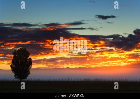 Lever du soleil, Alexandra, Central Otago, île du Sud, Nouvelle-Zélande, Pacifique Banque D'Images