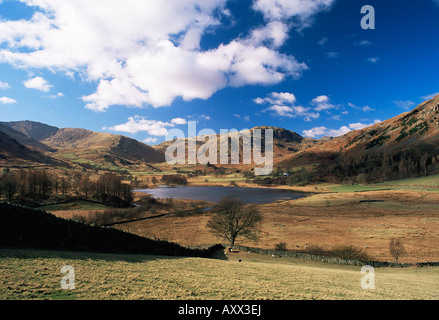 Vue de l'ouest du Tarn, Little Langdale Little Langdale, Parc National de Lake District, Cumbria, Angleterre, Royaume Banque D'Images