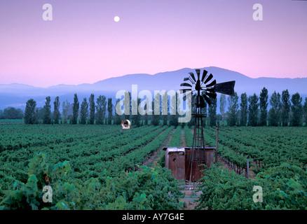 Ancien moulin à vent de la Napa Valley Wine Country vignobles de Californie du Nord Banque D'Images