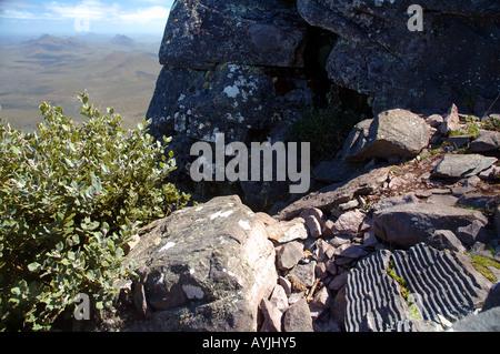 Les ondulations du sable fossilisé dans la roche sur la piste jusqu'au sommet du Mt Toolbrunup Stirling Range National Banque D'Images