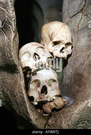 Indonésie: crâne dans une chambre funéraire des tombes dans les grottes de l'île de Sulawesi, Londa Banque D'Images