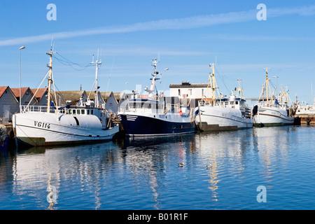 La flotte de pêche dans un port Banque D'Images