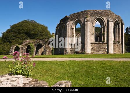Les ruines de l'abbaye de Margam Country Park, dans le sud du Pays de Galles. UK